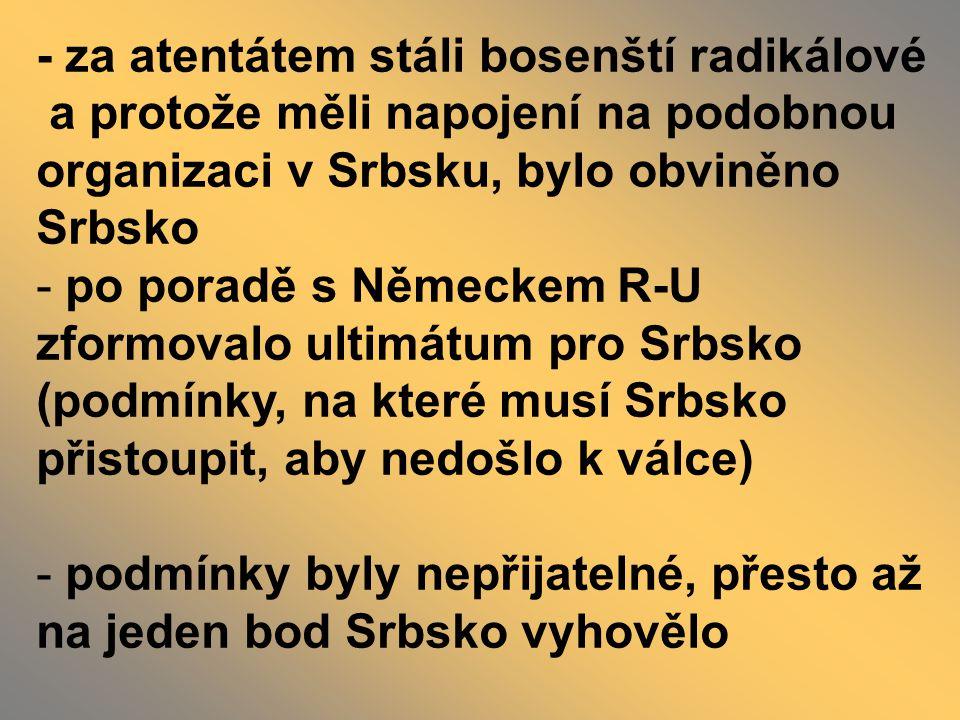 - za atentátem stáli bosenští radikálové