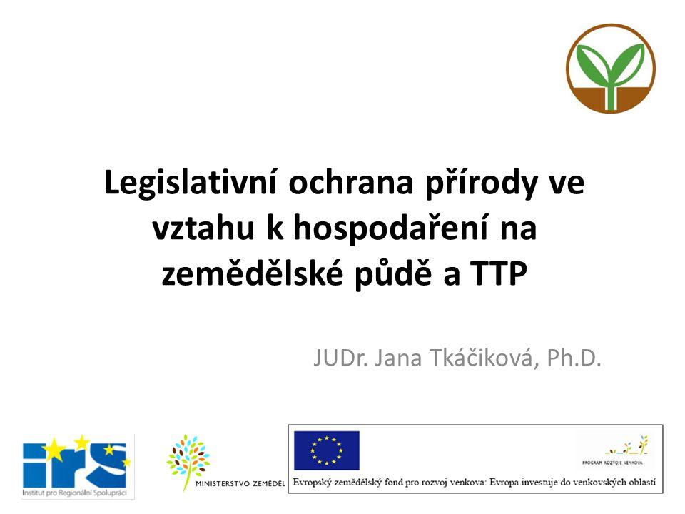 JUDr. Jana Tkáčiková, Ph.D.