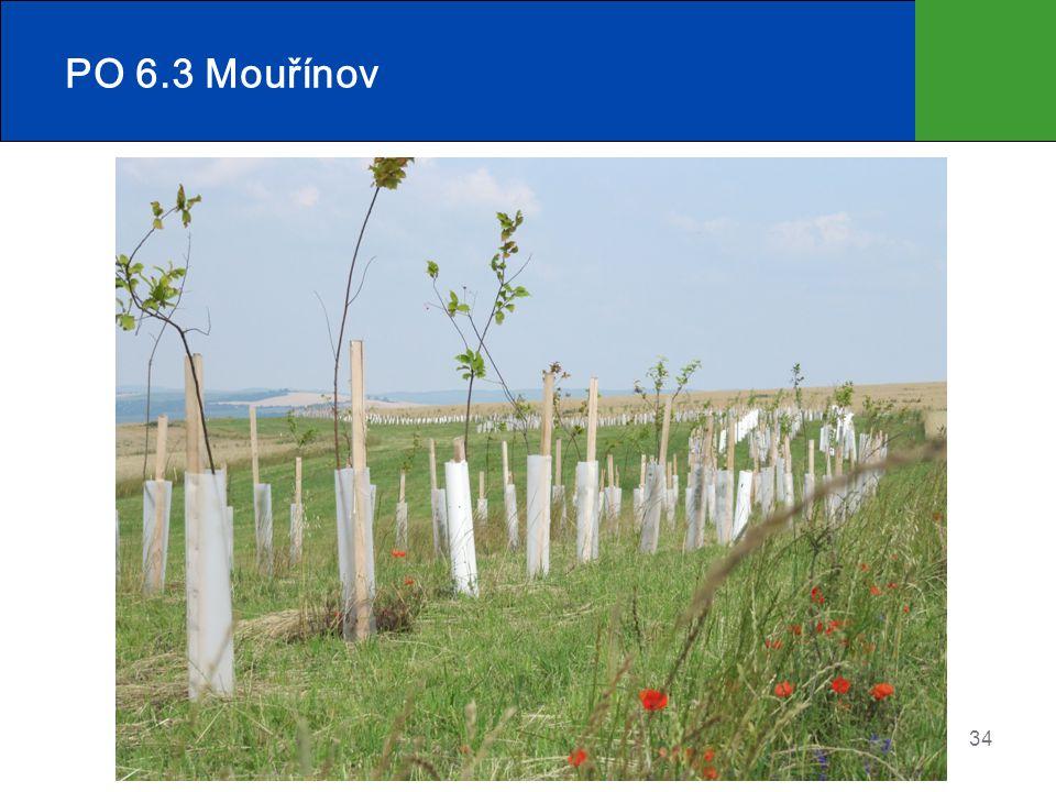 PO 6.3 Mouřínov
