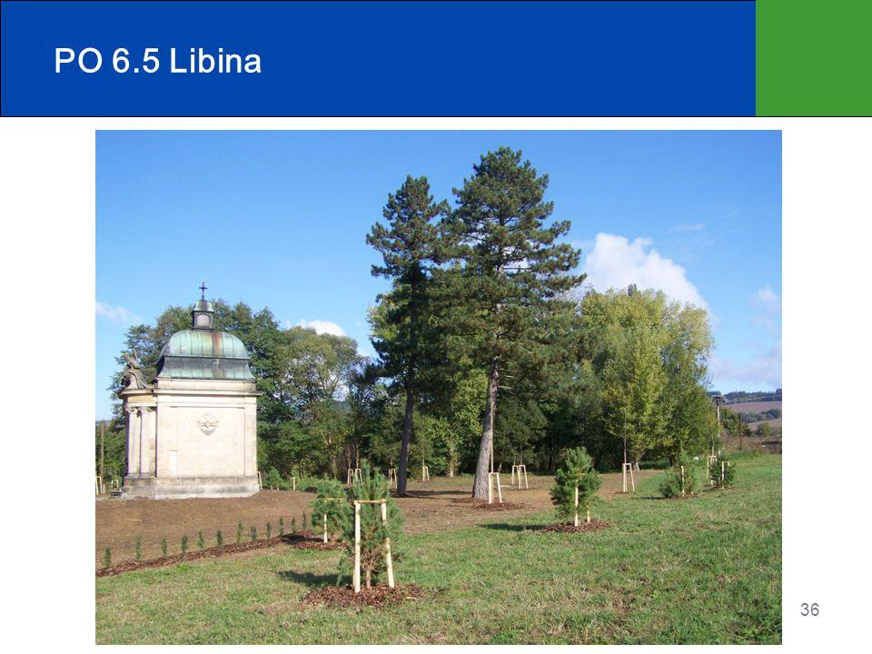 PO 6.5 Libina