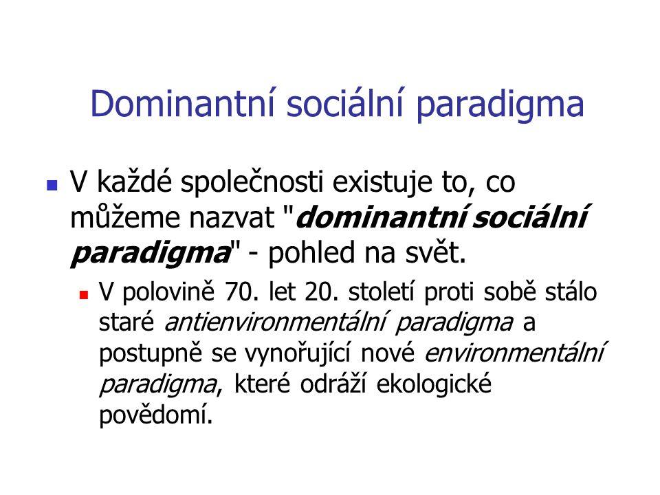 Dominantní sociální paradigma