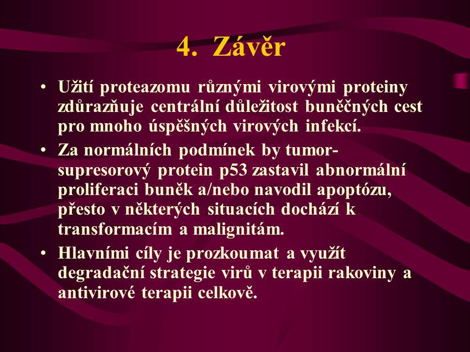 4. Závěr Užití proteazomu různými virovými proteiny zdůrazňuje centrální důležitost buněčných cest pro mnoho úspěšných virových infekcí.