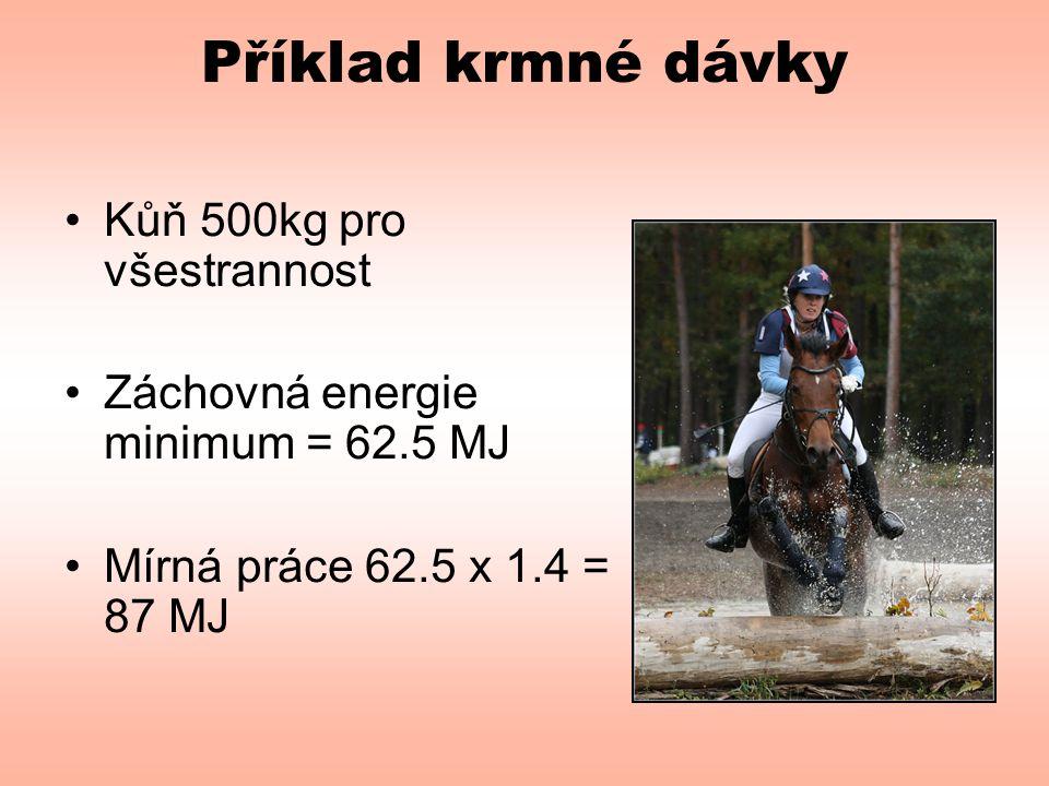 Příklad krmné dávky Kůň 500kg pro všestrannost