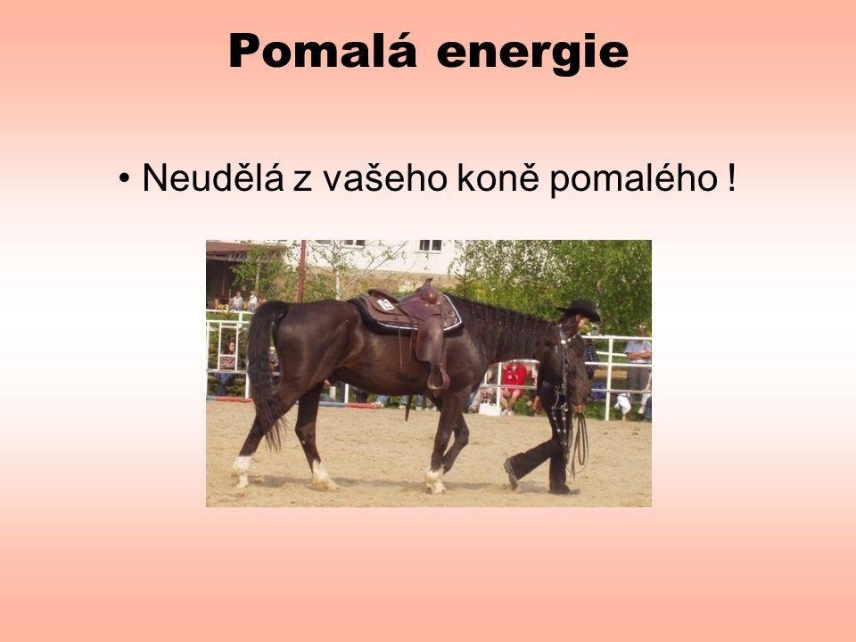 • Neudělá z vašeho koně pomalého !