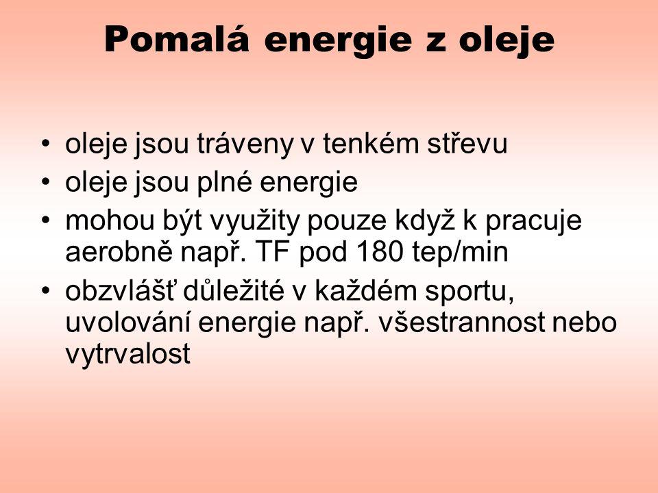 Pomalá energie z oleje oleje jsou tráveny v tenkém střevu