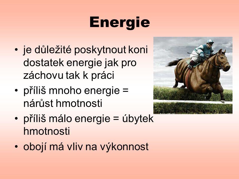 Energie je důležité poskytnout koni dostatek energie jak pro záchovu tak k práci. příliš mnoho energie = nárůst hmotnosti.
