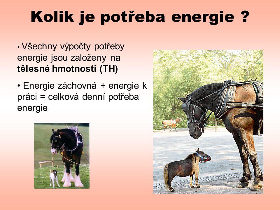 Kolik je potřeba energie