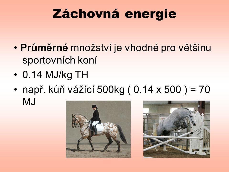 Záchovná energie • Průměrné množství je vhodné pro většinu sportovních koní.