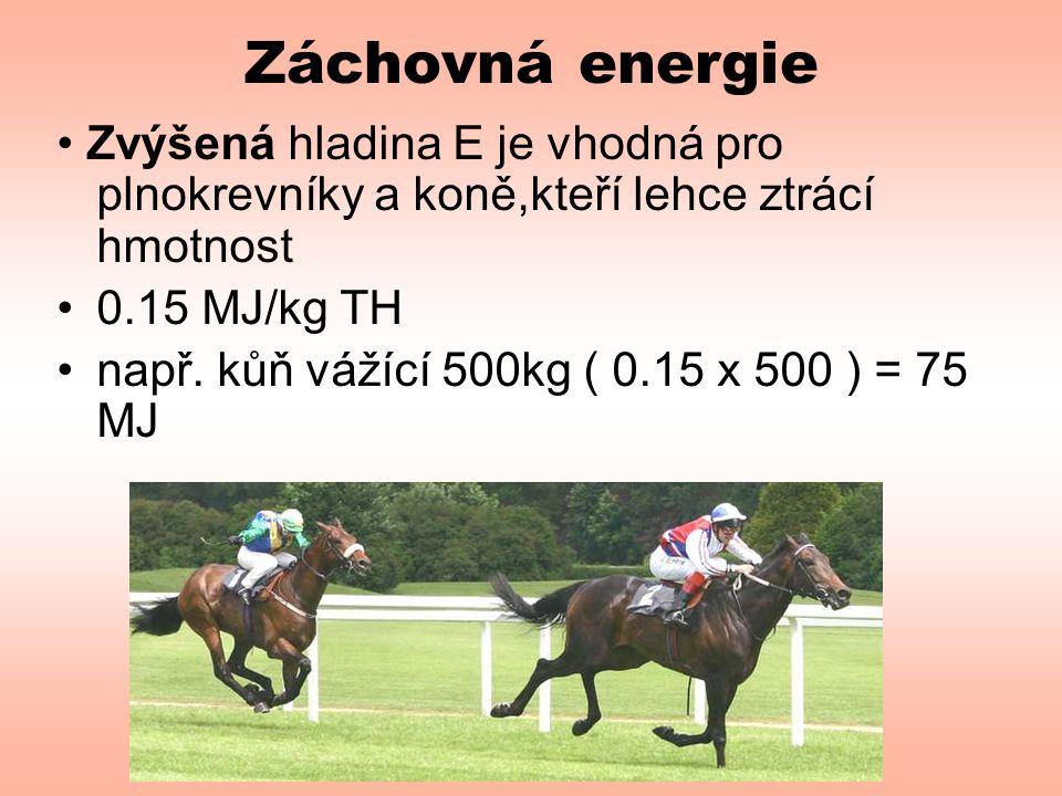 Záchovná energie • Zvýšená hladina E je vhodná pro plnokrevníky a koně,kteří lehce ztrácí hmotnost.