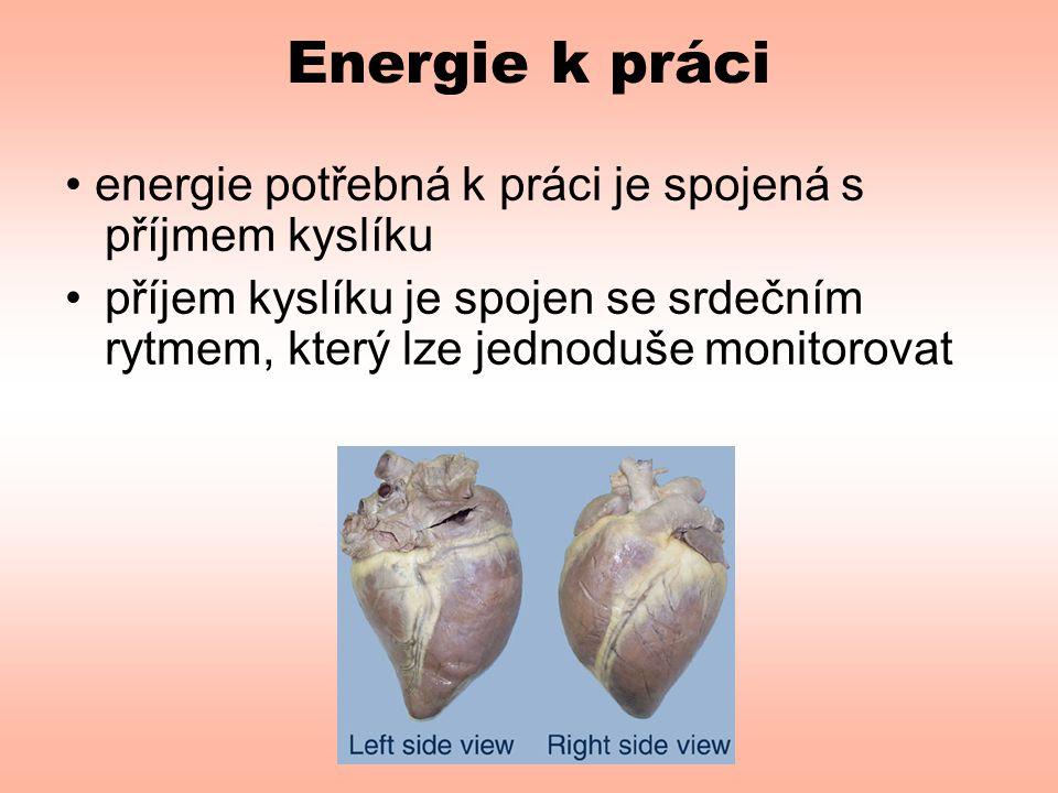 Energie k práci • energie potřebná k práci je spojená s příjmem kyslíku.