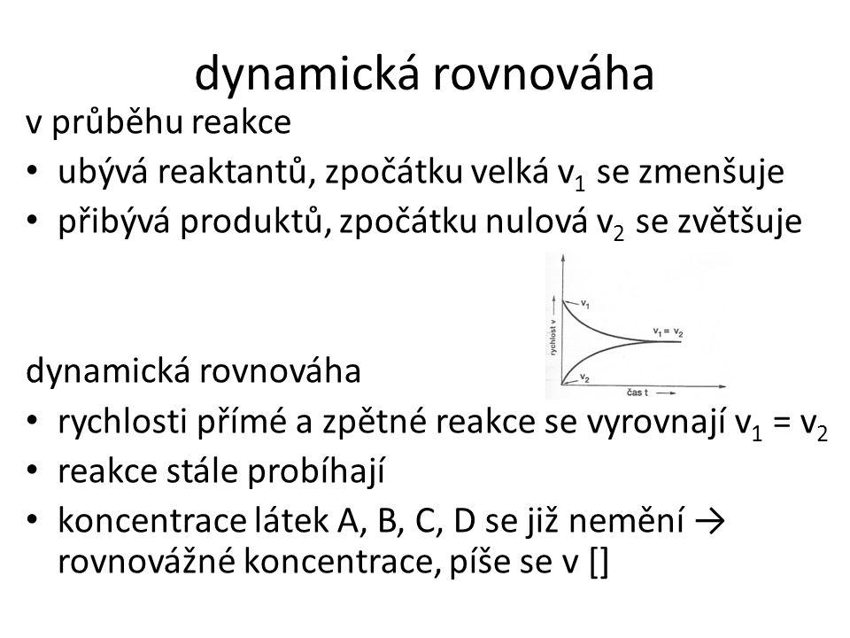 dynamická rovnováha v průběhu reakce