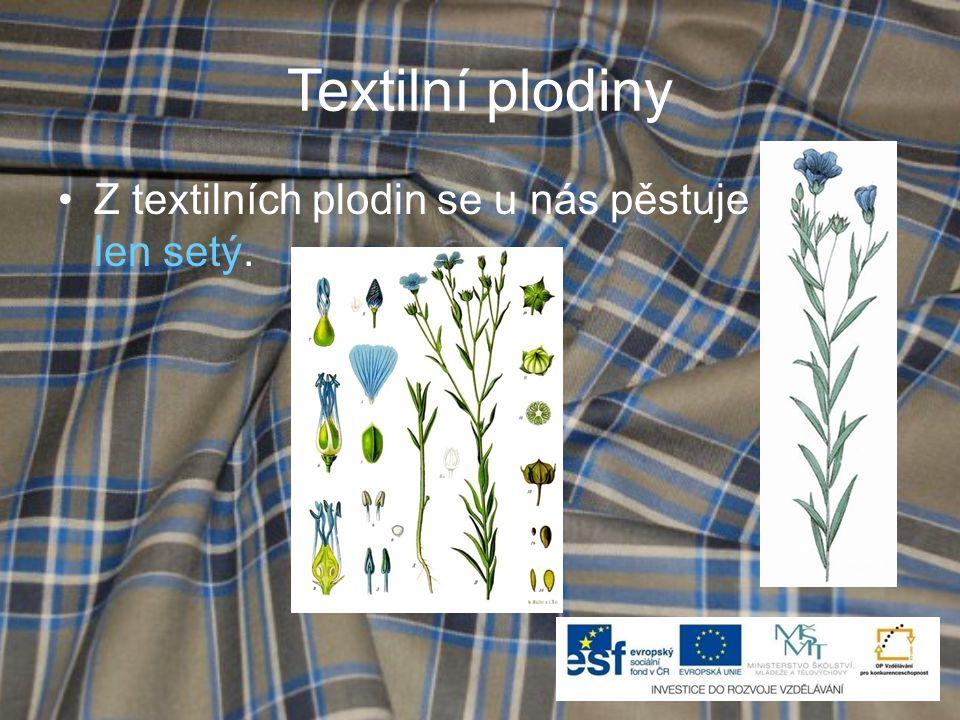 Textilní plodiny Z textilních plodin se u nás pěstuje len setý.