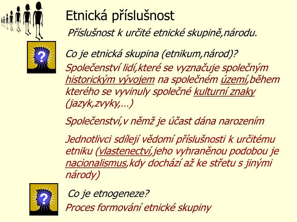 Etnická příslušnost Příslušnost k určité etnické skupině,národu.