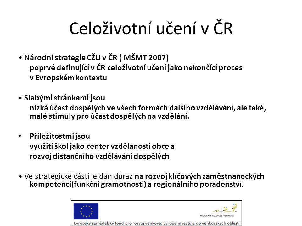 Celoživotní učení v ČR • Národní strategie CŽU v ČR ( MŠMT 2007)