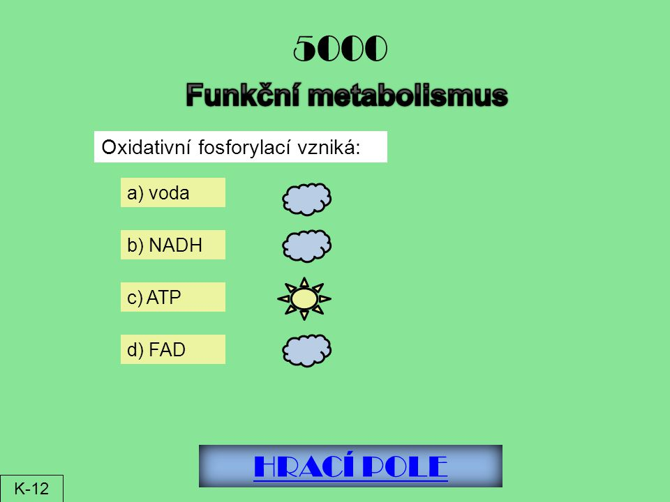 5000 Funkční metabolismus HRACÍ POLE Oxidativní fosforylací vzniká: