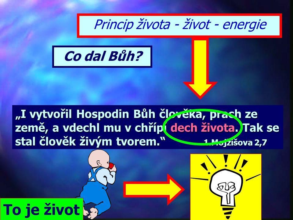 Princip života - život - energie