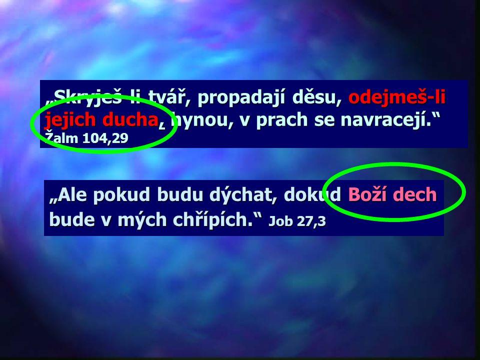"""""""Skryješ-li tvář, propadají děsu, odejmeš-li jejich ducha, hynou, v prach se navracejí. Žalm 104,29"""