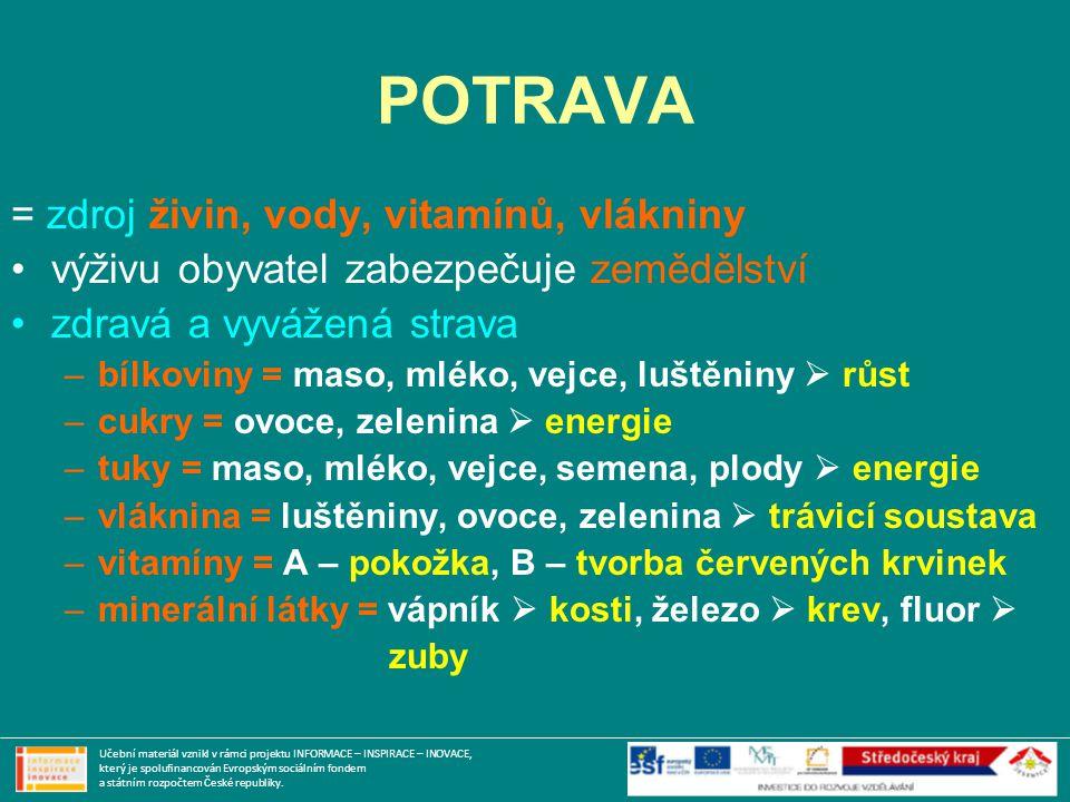 POTRAVA = zdroj živin, vody, vitamínů, vlákniny