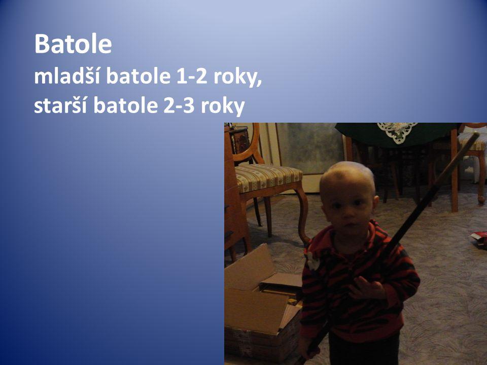 Batole mladší batole 1-2 roky, starší batole 2-3 roky