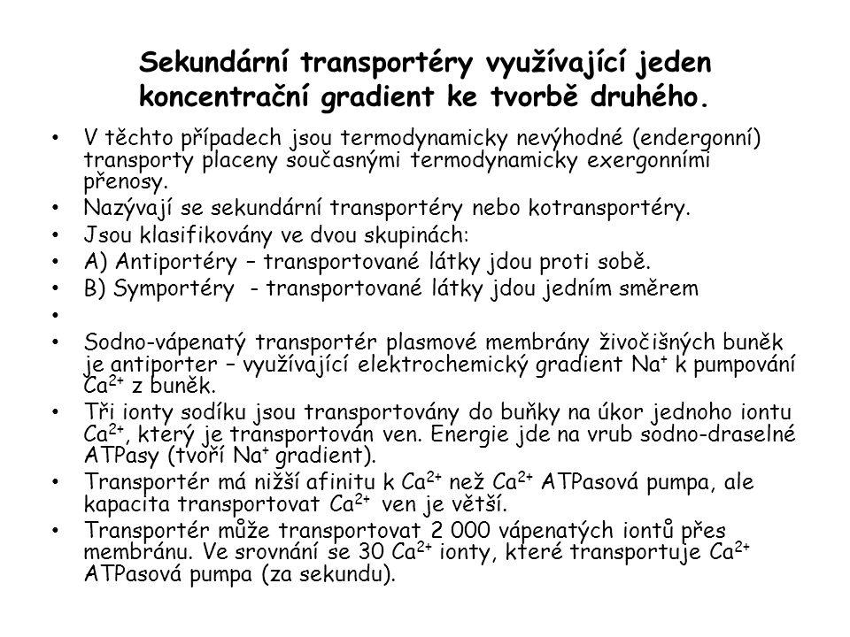 Sekundární transportéry využívající jeden koncentrační gradient ke tvorbě druhého.