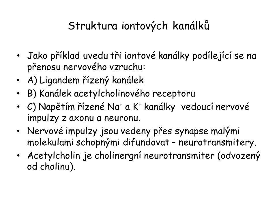 Struktura iontových kanálků