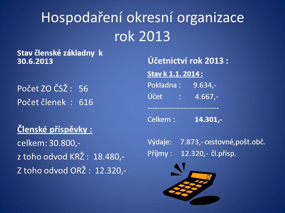 Hospodaření okresní organizace rok 2013