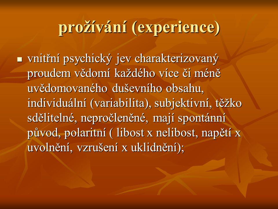 prožívání (experience)