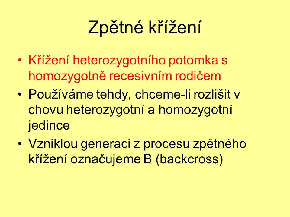 Zpětné křížení Křížení heterozygotního potomka s homozygotně recesivním rodičem.