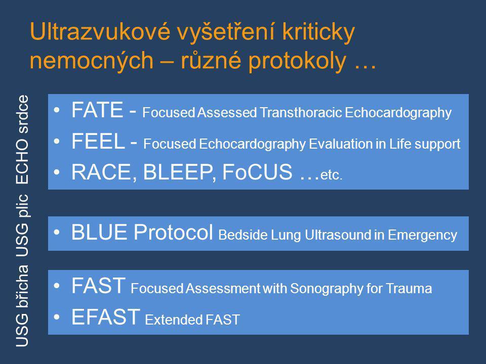 Ultrazvukové vyšetření kriticky nemocných – různé protokoly …