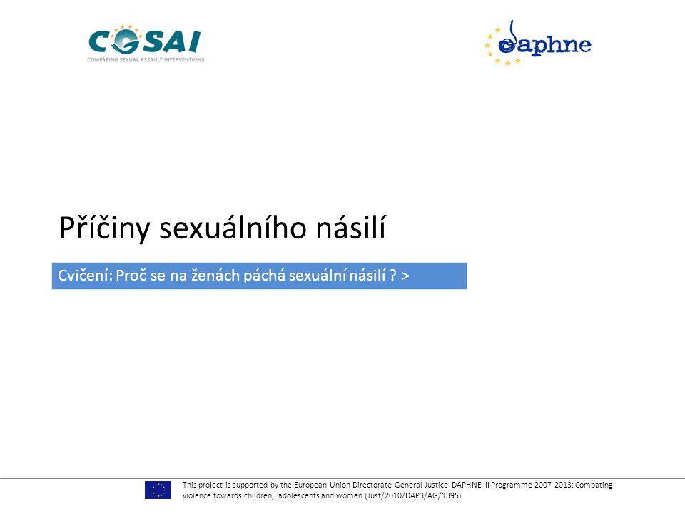 Příčiny sexuálního násilí