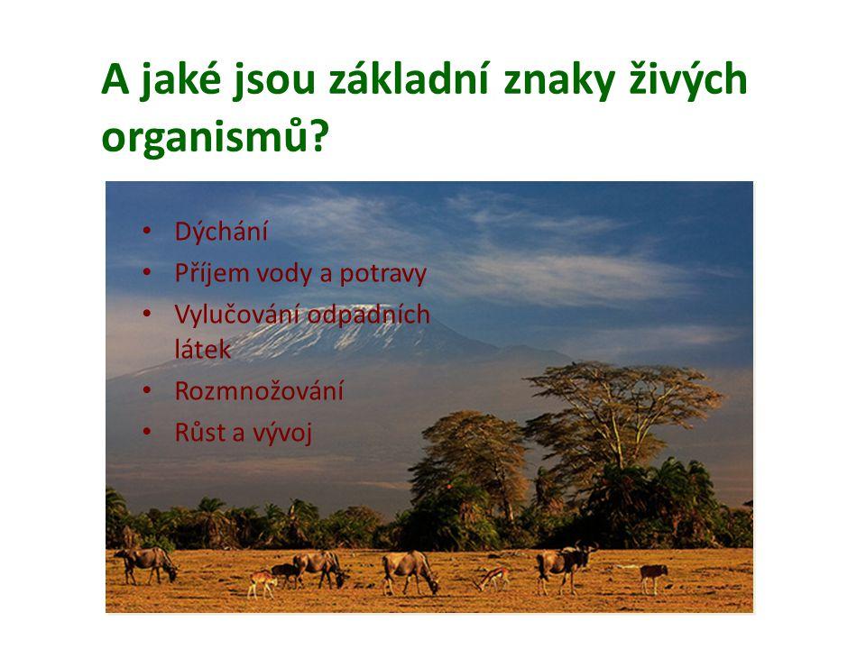 A jaké jsou základní znaky živých organismů