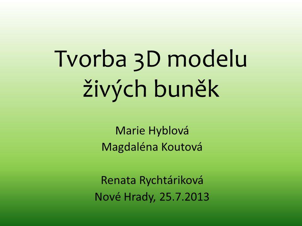 Tvorba 3D modelu živých buněk