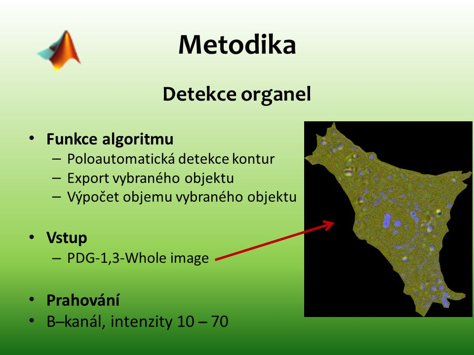 Metodika Detekce organel Funkce algoritmu Vstup Prahování