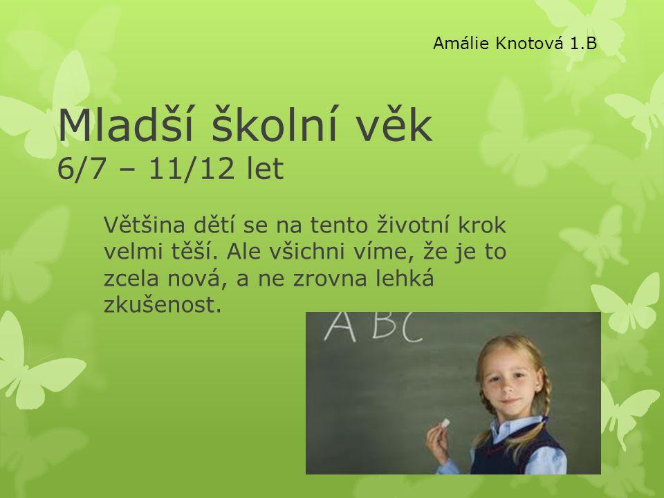 Mladší školní věk 6/7 – 11/12 let