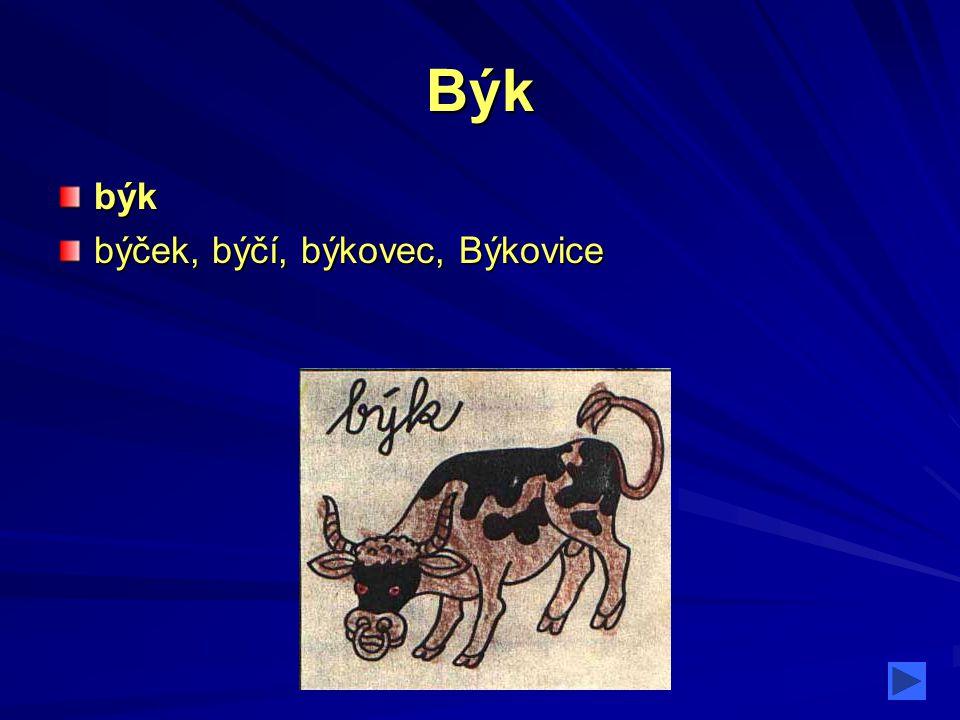 Býk býk býček, býčí, býkovec, Býkovice
