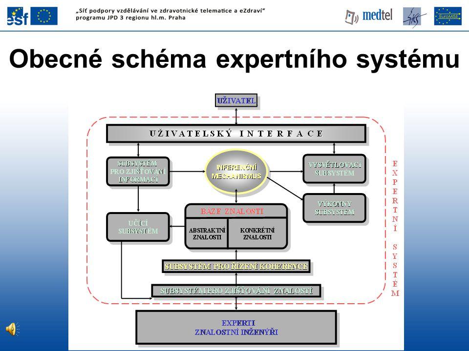 Obecné schéma expertního systému