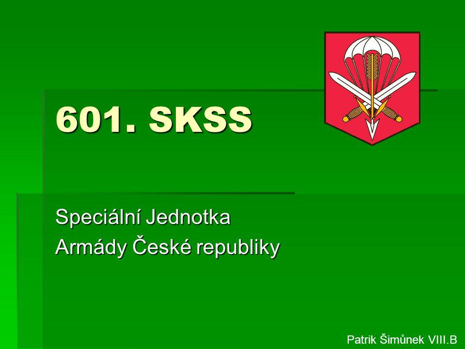Speciální Jednotka Armády České republiky