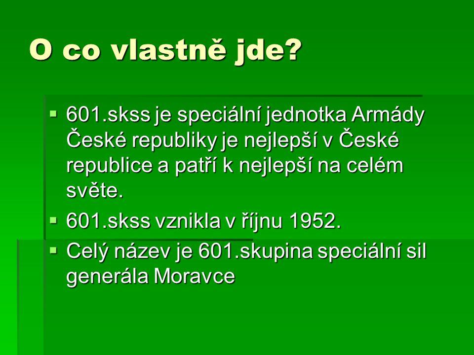 O co vlastně jde 601.skss je speciální jednotka Armády České republiky je nejlepší v České republice a patří k nejlepší na celém světe.