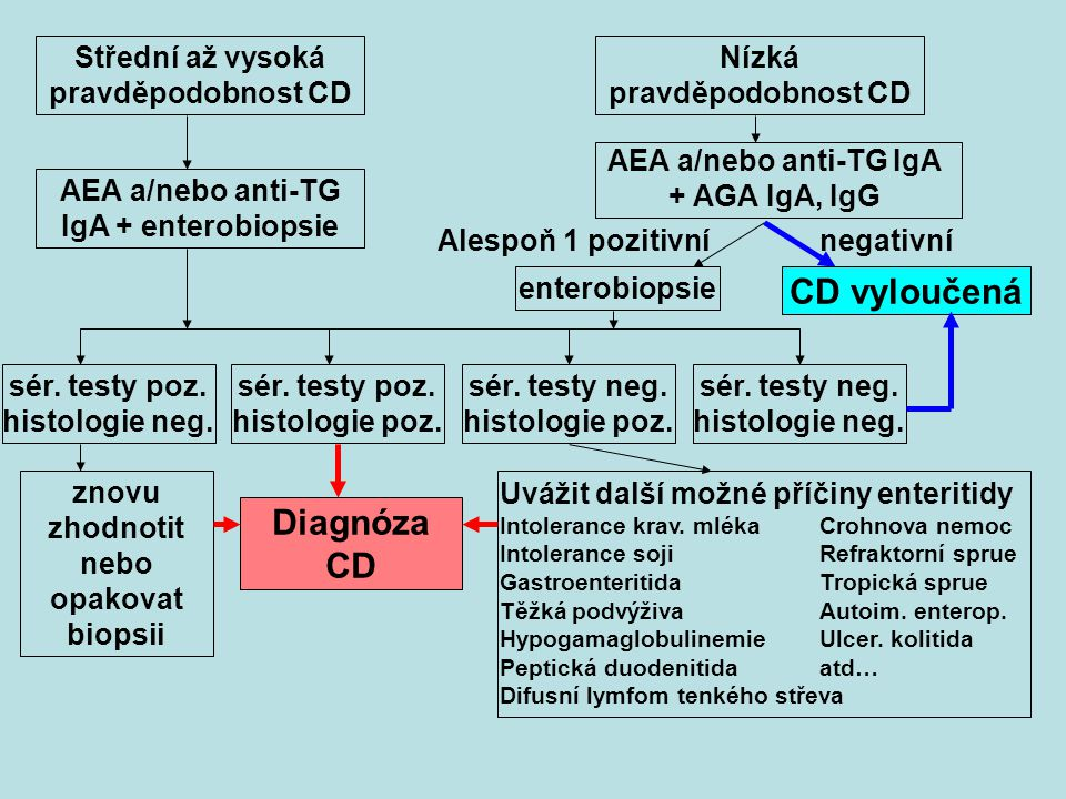 CD vyloučená Diagnóza CD