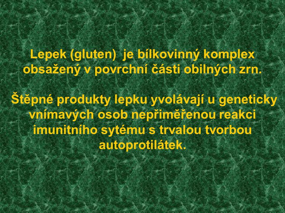 Lepek (gluten) je bílkovinný komplex obsažený v povrchní části obilných zrn.