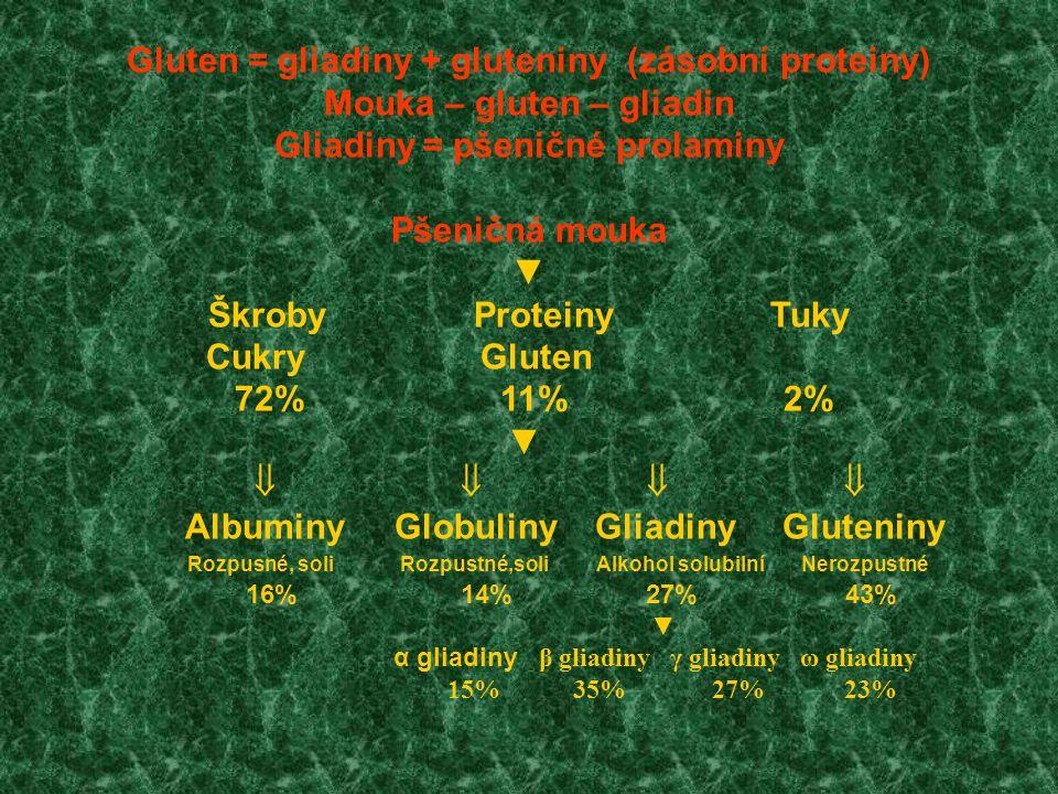 Gluten = gliadiny + gluteniny (zásobní proteiny)