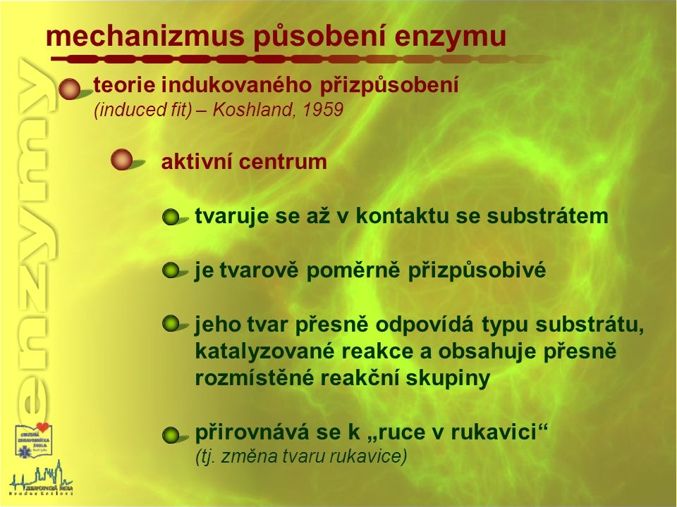 mechanizmus působení enzymu