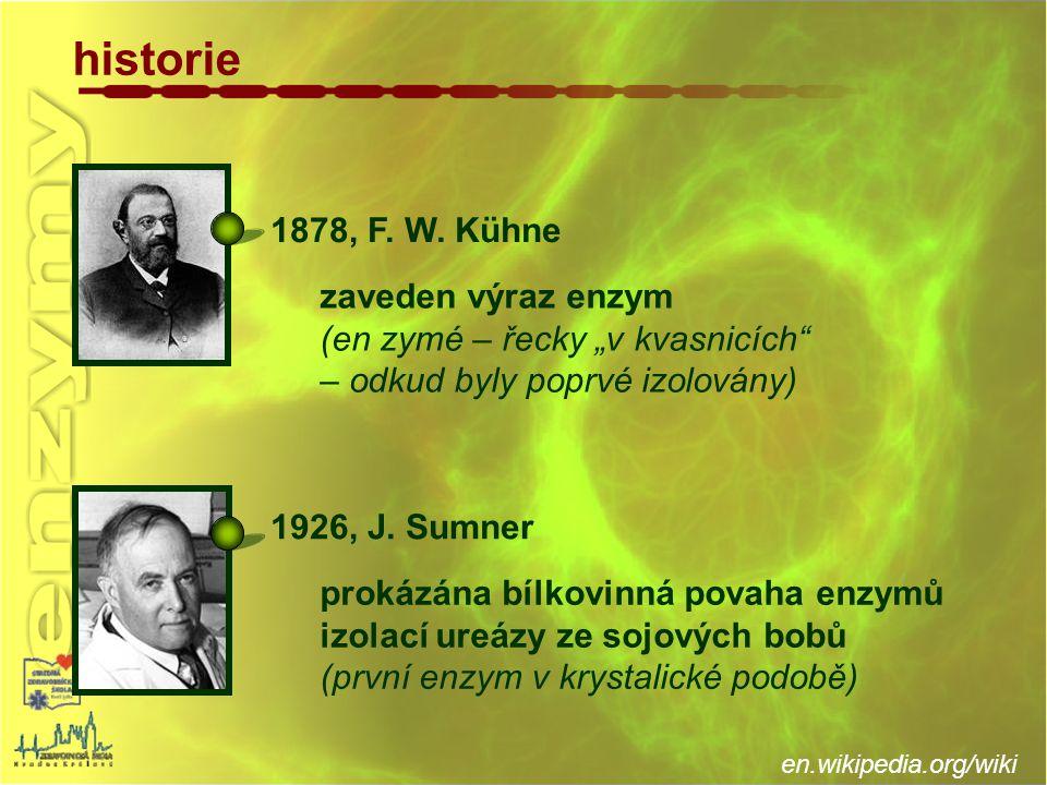 historie 1878, F. W. Kühne zaveden výraz enzym