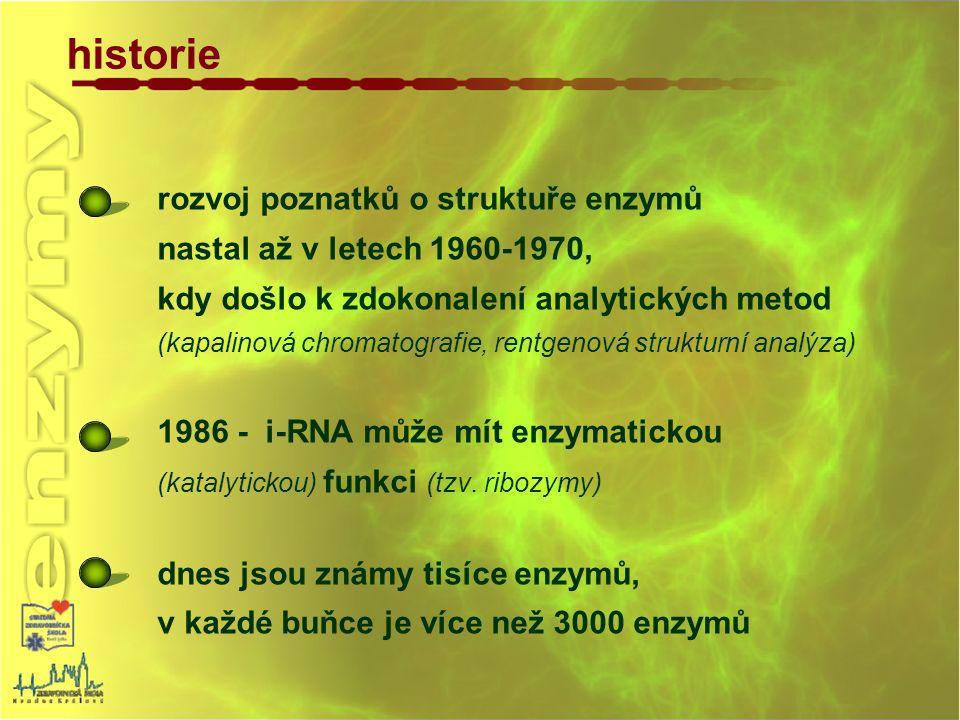 historie rozvoj poznatků o struktuře enzymů
