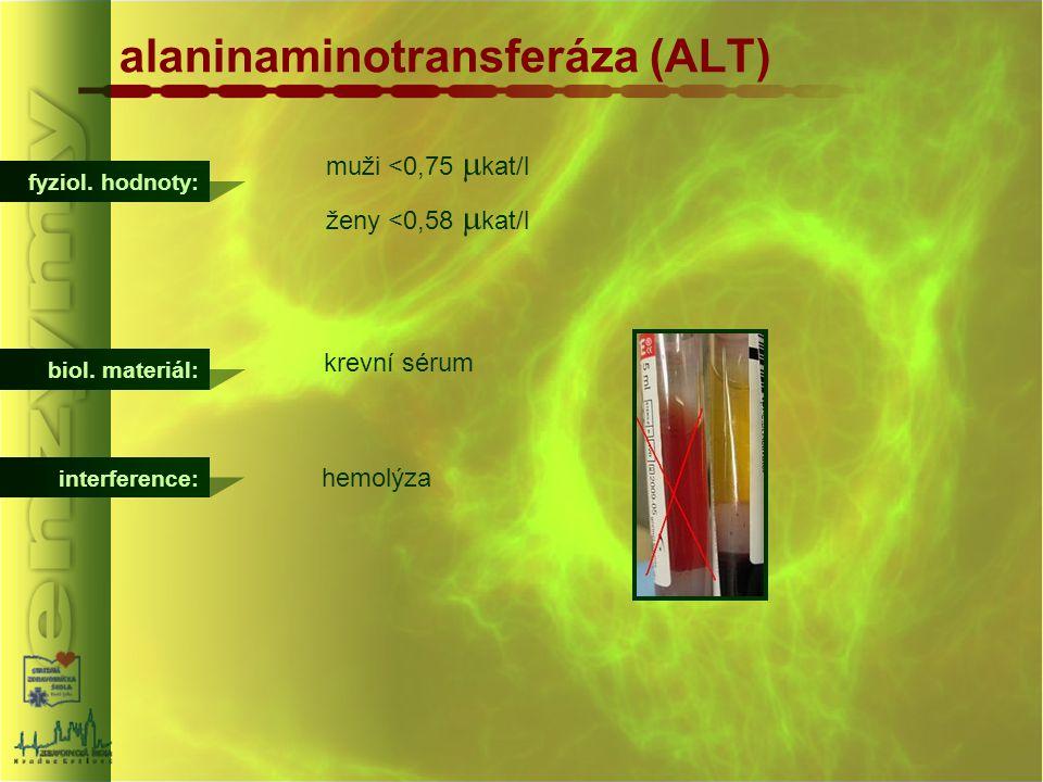 alaninaminotransferáza (ALT)