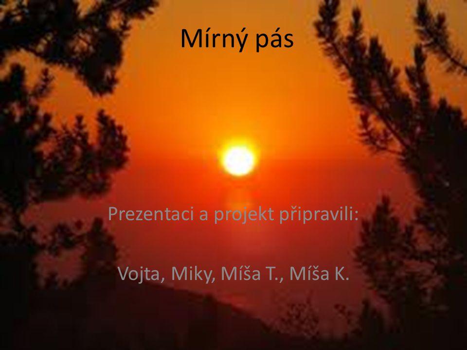 Prezentaci a projekt připravili: Vojta, Miky, Míša T., Míša K.