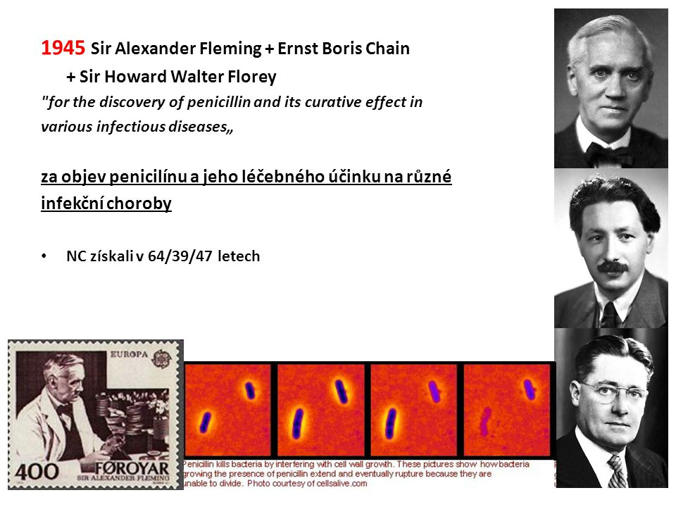 1945 Sir Alexander Fleming + Ernst Boris Chain