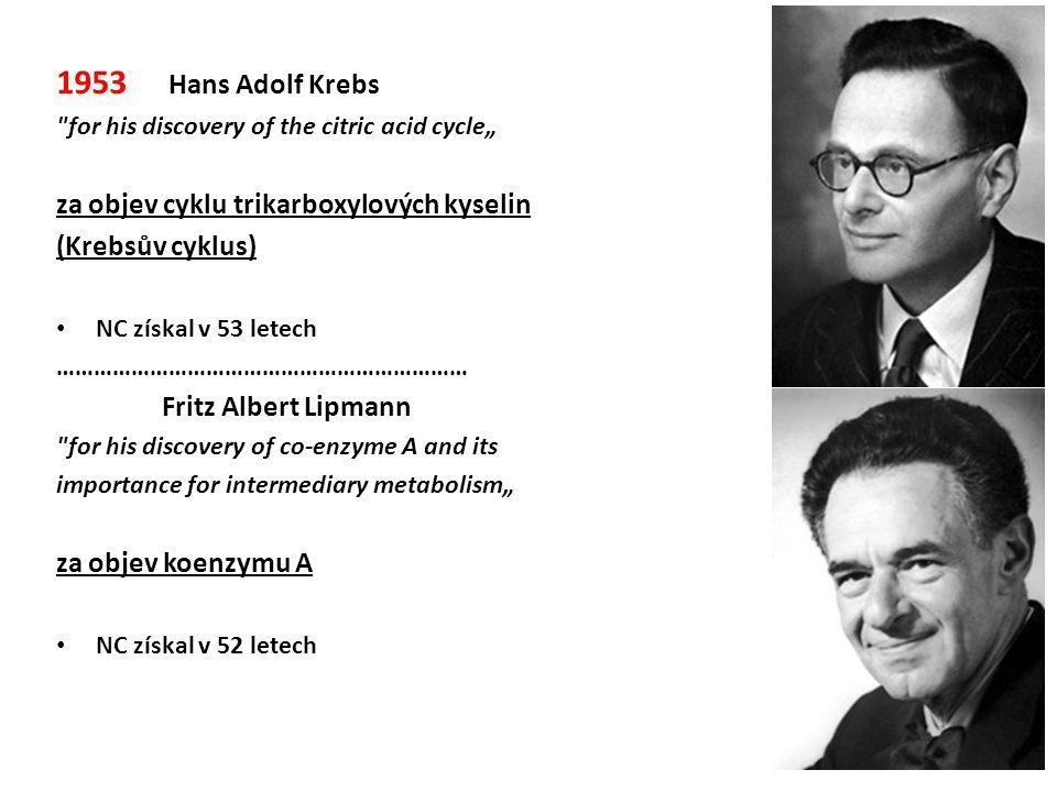 1953 Hans Adolf Krebs za objev cyklu trikarboxylových kyselin