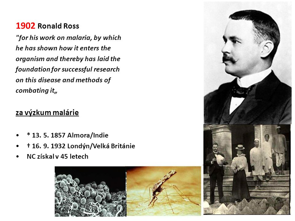 1902 Ronald Ross za výzkum malárie for his work on malaria, by which