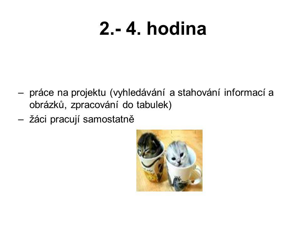 2.- 4. hodina práce na projektu (vyhledávání a stahování informací a obrázků, zpracování do tabulek)